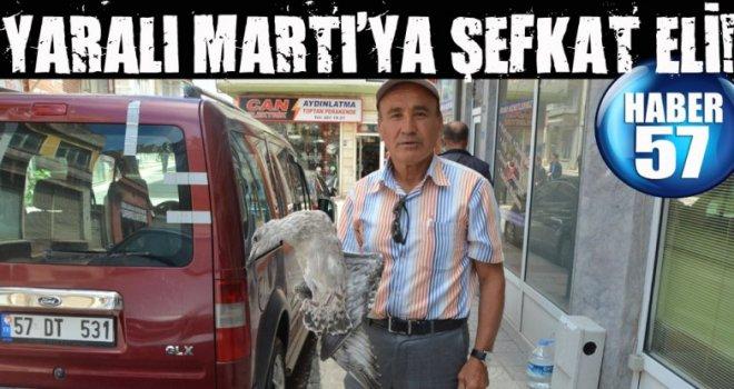 YARALI MARTI'YA ŞEFKAT ELİ!