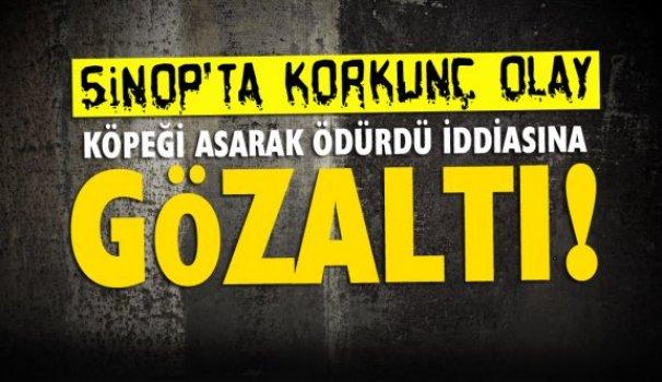 Sinop'ta köpeği ağaca asarak öldürdü iddiası - Vitrin Haber