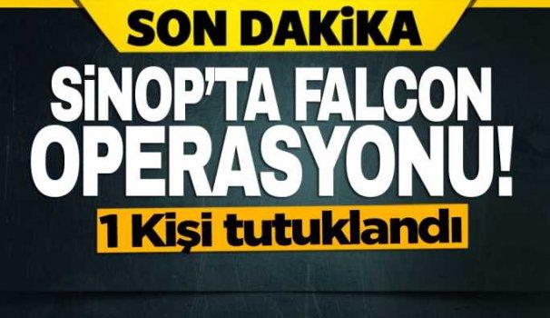 Sinop'ta Falcon operasyonu: 1 tutuklama