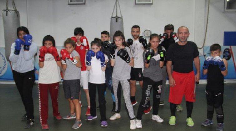 Sinoplu boksörler şampiyonaya hazırlanıyor