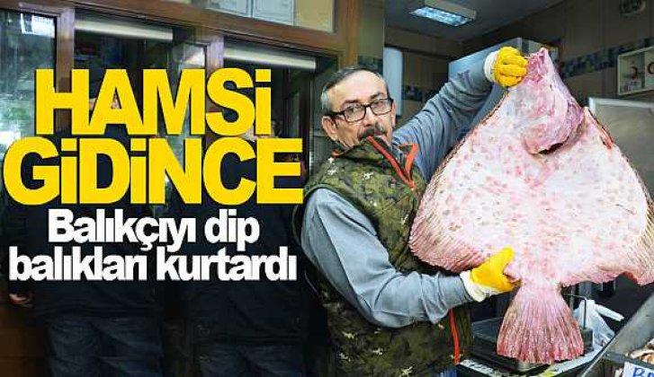 Sinoplu balıkçıyı dip balıkları sevindirdi - Vitrin Haber