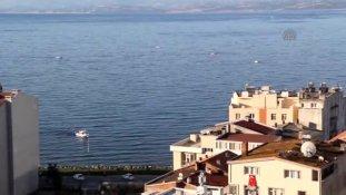 Sinop-Kastamonu Su Ürünleri Kooperatifi Bölge Birliği Başkanı Bayrak