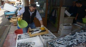 Karadenizli balıkçının umudu hamside