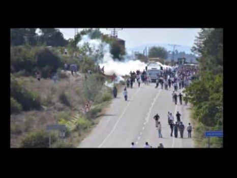 Son dakika Sinop'un Durağan İlçesi'nde olaylar yeniden alevlendi 172 göz altı